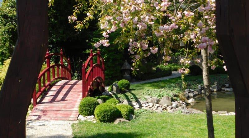 Japanese garden in Mozirski gaj