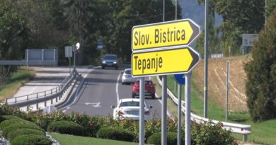 Development of the Tepanje business zone
